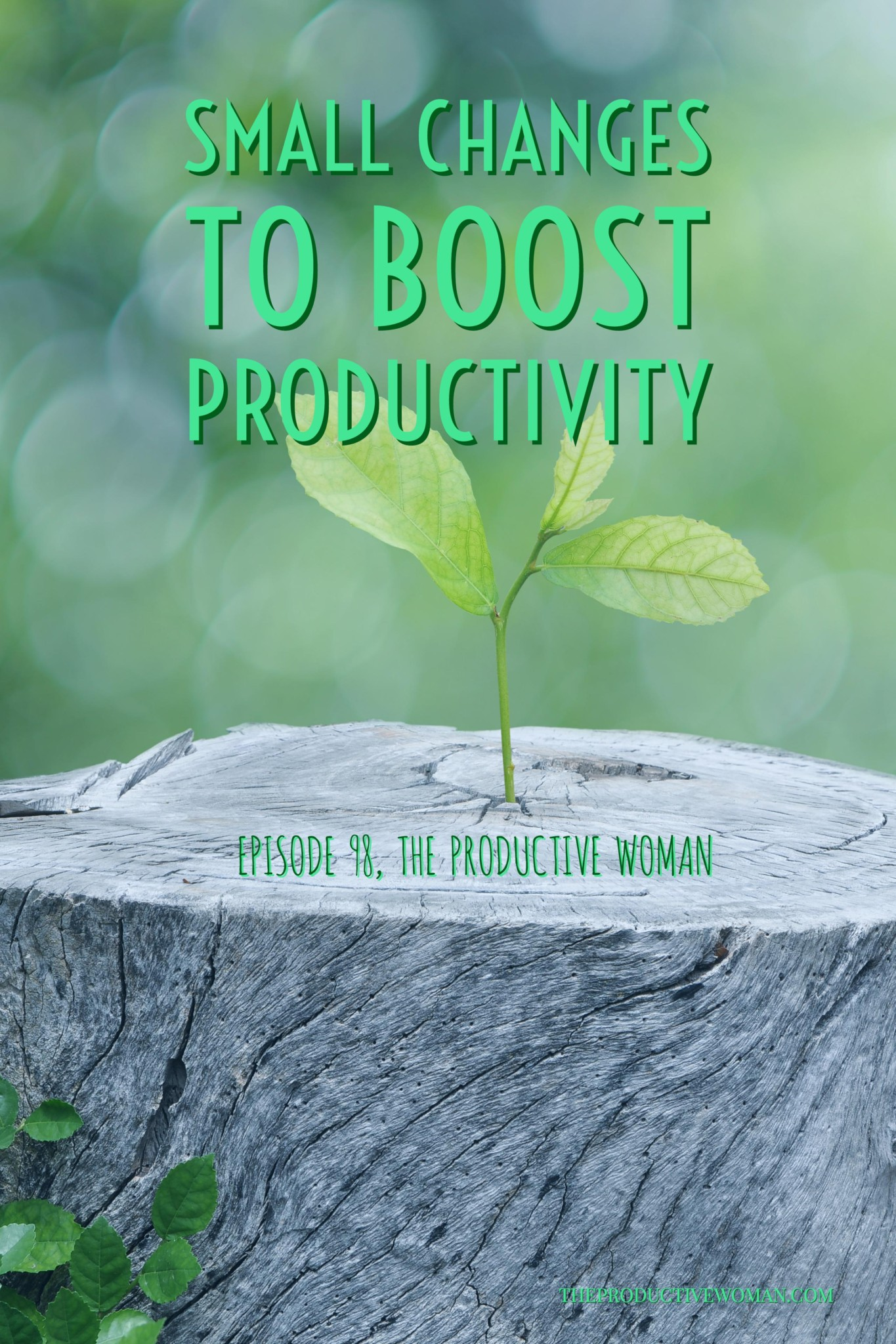 You don't have to completely overhaul your life to make progress toward your goals. Small changes can reap big rewards in making a meaningfully productive life. Episode 98 of The Productive Woman podcast looks at some small changes you can make today to improve your productivity.