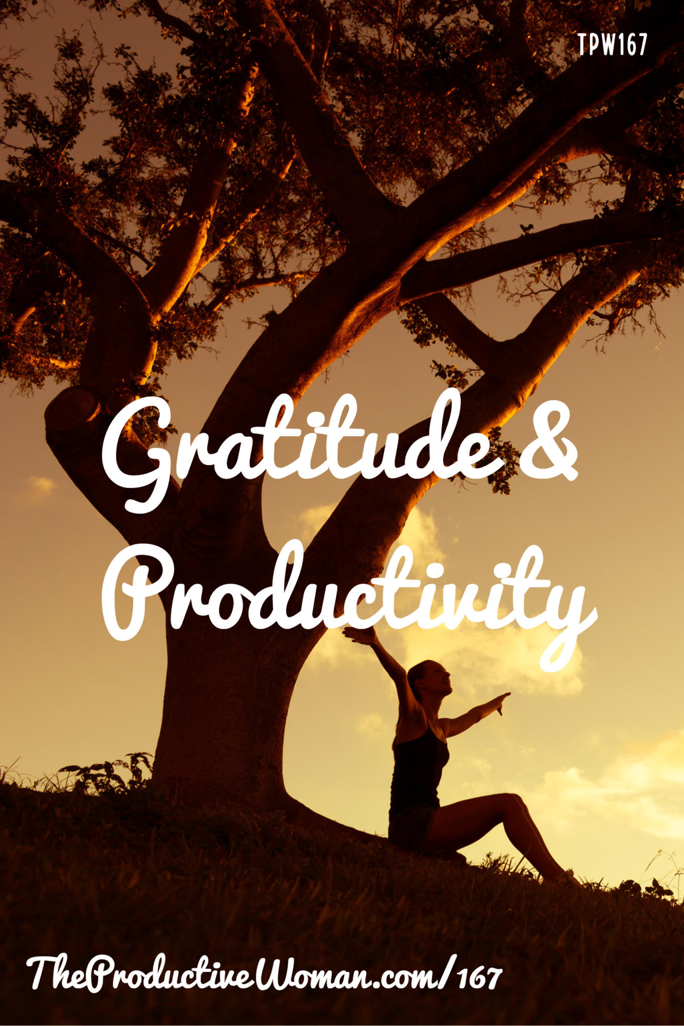 As we're entering the holiday season, it's a good time to give thought to how gratitude can affect ourproductivity. In episode 167 of The Productive Woman we talk about that, and I share a few things I'm grateful for. For more, visit TheProductiveWoman.com/167.